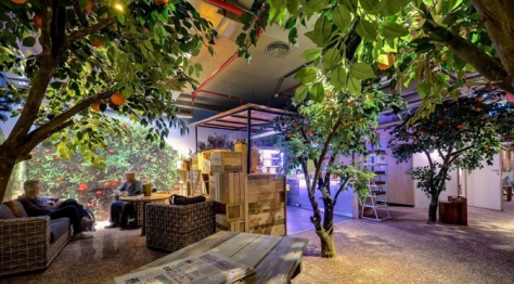 Nature brought indoors at Google Tel Aviv provides a stress-reducing atmosphere